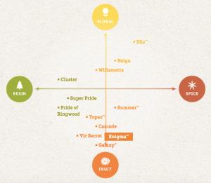 Enigma Hop Profile